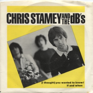 Chris Stamey - (I Thought) You Wanted To Know