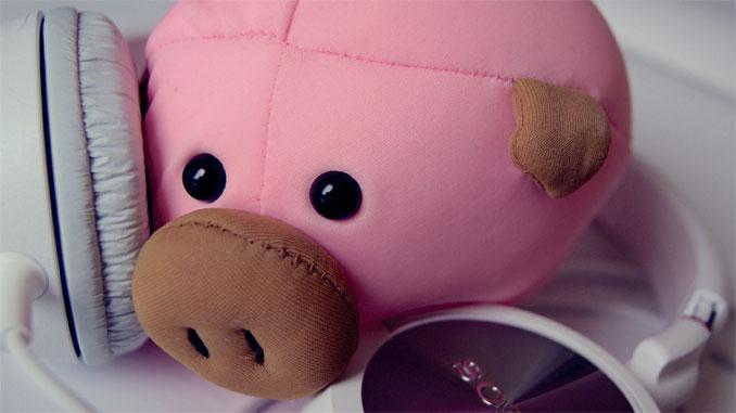 Pig Pic 2016