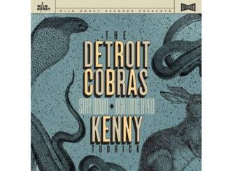 "Detroit Cobras – Stay Down 7"""
