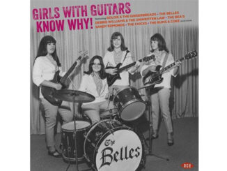Various Artists – Girls With Guitars Know Why!
