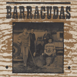 Barracudas ‎– The Way We've Changed