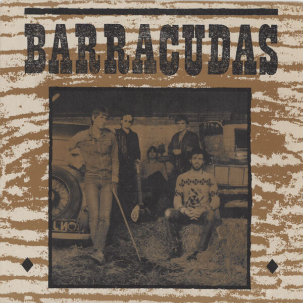 Barracudas – The Way We've Changed