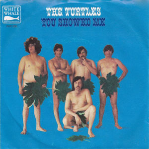 Turtles - You Showed Me
